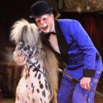 Showportrait: Circus Krone