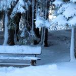 Winterblues – so überstehst du die dunkle Jahreszeit