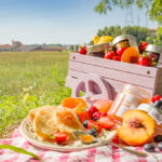Kultur trifft Kulinarik: Die schönsten Picknick-Konzerte